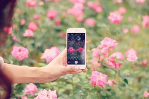 【カメラアプリ】押さえておくべきおすすめ「アプリ制作会社」10選